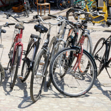 Bicicletes per estudiar